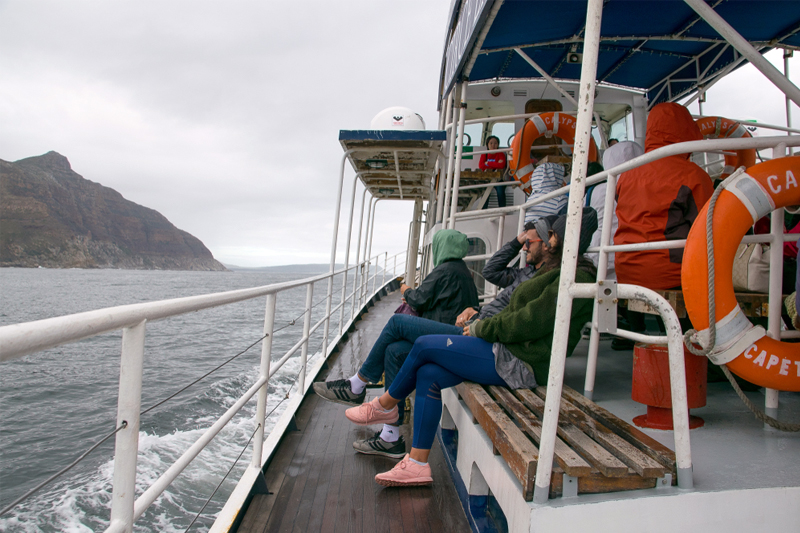 DAY 06 - CAPE POINT | HOUT BAY | SEAL ISLAND | BOULDERS BEACH (FULL DAY ACTIVITY)