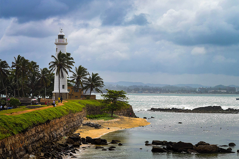 DAY 11 - MIRISSA WHALE WATCHING | GALLE DUTCH FORT (APPROX.TRAVEL TIME 1 HRS)