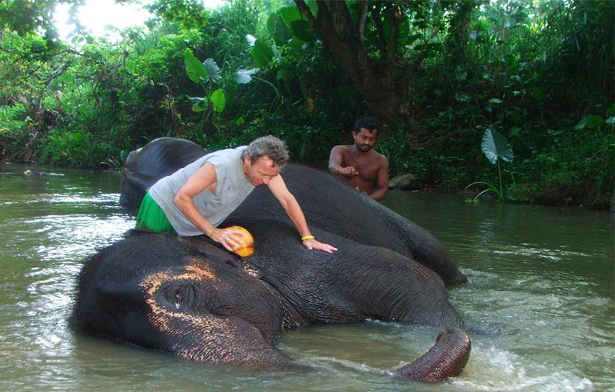 Day 03 - COLOMBO | MILLENNIUM ELEPHANT ORPHANAGE | WADDUWA